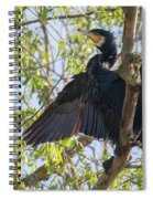 Great Cormorant - High In The Tree Spiral Notebook