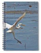 Great Egret Ascending Spiral Notebook