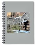 Great Egret Chase Art 9861-072316-2cr Spiral Notebook