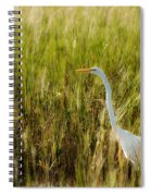 Great Egret In The Morning Dew Spiral Notebook