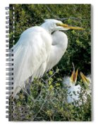 Great Egret Mom And Babies Spiral Notebook
