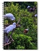 Great Egret Pair Spiral Notebook