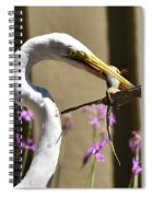 Great Egret With Lizard Who Is Holding Onto Wood Spiral Notebook