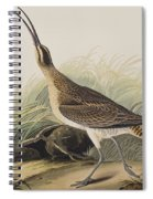 Great Esquimaux Curlew Spiral Notebook