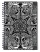 Great Gray Owl Stare Down Spiral Notebook