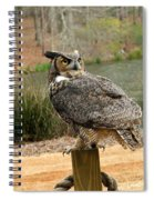 Great Horned Owl 1 Spiral Notebook