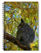 Great Horned Owl 2 Spiral Notebook