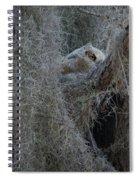 Great Horned Owl Fledgling Spiral Notebook