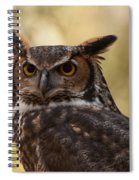 Great Horned Owl In A Tree 1 Spiral Notebook