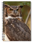 Great Horned Owl In A Tree 3 Spiral Notebook