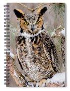 Great Horned Owl Nature Wear Spiral Notebook