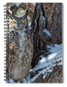 Great Horned Owl On Snowy Branch Spiral Notebook