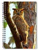 Great Horned Owl Wink Spiral Notebook