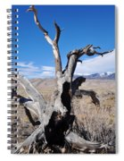 Great Sand Dunes National Park Fallen Tree Portrait Spiral Notebook