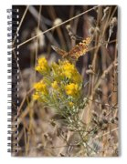 Great Spangled Fritillary 3 Spiral Notebook