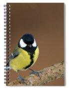 Great Tit Spiral Notebook