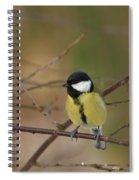 Great Tit Female Spiral Notebook