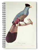 Great Touraco Spiral Notebook
