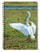 Great White Egret Ahoy Spiral Notebook