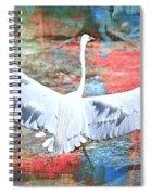 Great White Egret Landing Spiral Notebook