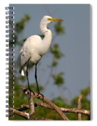 Great White Egret Pose Spiral Notebook