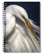 Great White Egret Print One Spiral Notebook