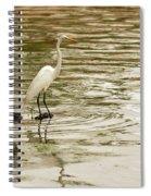 Great White Egret Spiral Notebook