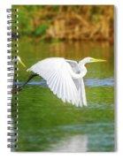Great White Egrets Spiral Notebook
