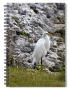 Great White Heron Race Spiral Notebook