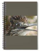 Greater Roadrunner Portrait Spiral Notebook