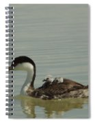 Grebe With Two Chicks On Its Back Spiral Notebook