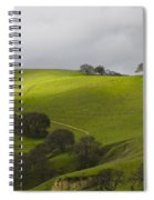 Green 2 Spiral Notebook