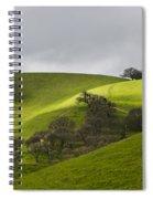 Green 3 Spiral Notebook
