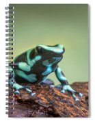 Green And Black Poison Dart Frog Spiral Notebook