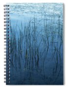 Green And Blue Serenity - Smooth Wetland Morning Spiral Notebook