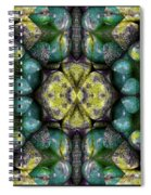 Green And Blue Stones 3 Spiral Notebook