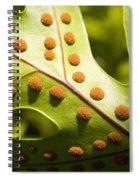 Green And Orange Leaf Spiral Notebook
