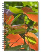 Green And Orange Leaves Spiral Notebook