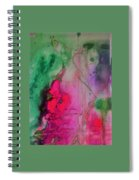Green And Pink Spiral Notebook