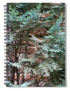 Green And Red - Slender Cypress Branches Over Rough Roman Brick Wall Spiral Notebook