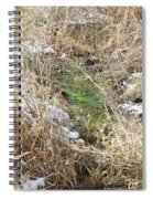 Green And White Spiral Notebook