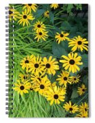 Green And Yellow Burst Spiral Notebook