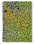 Green And Yellow Spiral Notebook