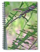 Green Anole Spiral Notebook
