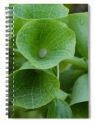 Green Bells Spiral Notebook