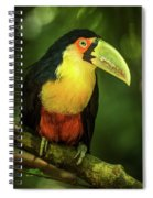 Green-billed Toucan Perched On Branch In Jungle Spiral Notebook