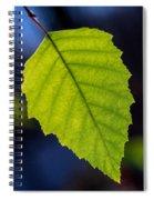 Green Beech Leaf 1 Spiral Notebook