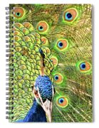 Green Blue Peacock Showing Off His Feathered Tail No2 Spiral Notebook
