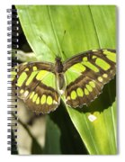 Green Butterfly Spiral Notebook