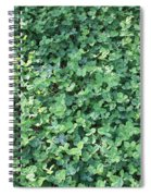 Green Clovers Spiral Notebook